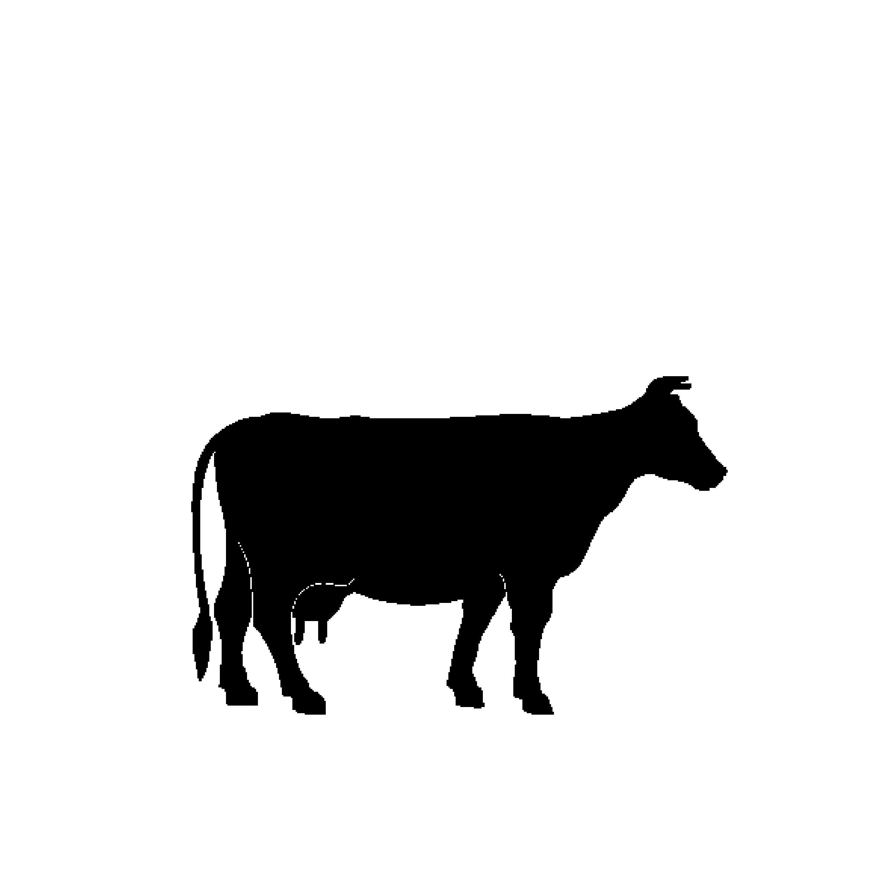 Cowhide-01